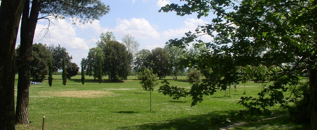 Prato citt verde citt di prato for Prato verde